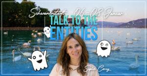 Talk to the Entities Schwanenstadt Sophie Cerny